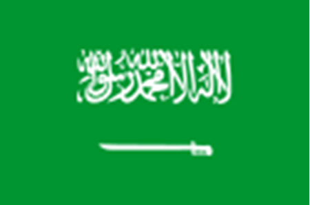 Picture for category Saudi Arabia