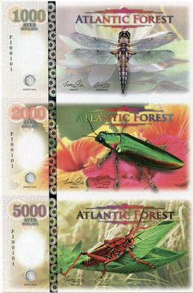 Picture of Atlantic Forest,1000/2000/5000 Aves SET,2016